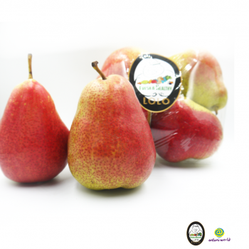 South Africa Forella Pear 4pcs